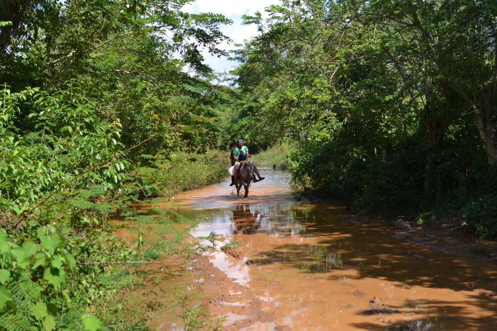 Rettung über eine Pfütze mit Pferd