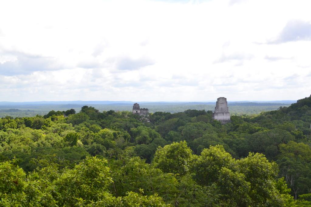 Mayastätte Tikal im Norden Guatemalas