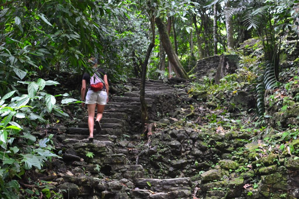 Dschungel in Palenque