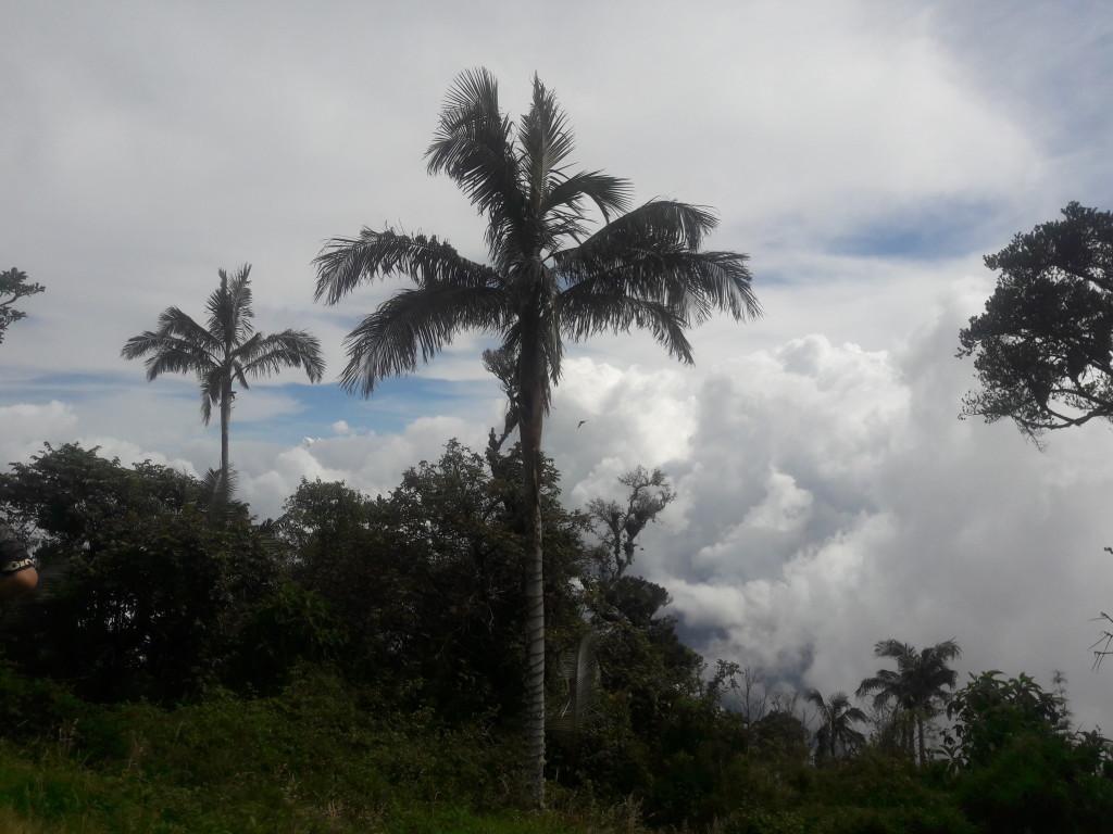 Ausblick auf die Sierra Nevada de Santa Marta