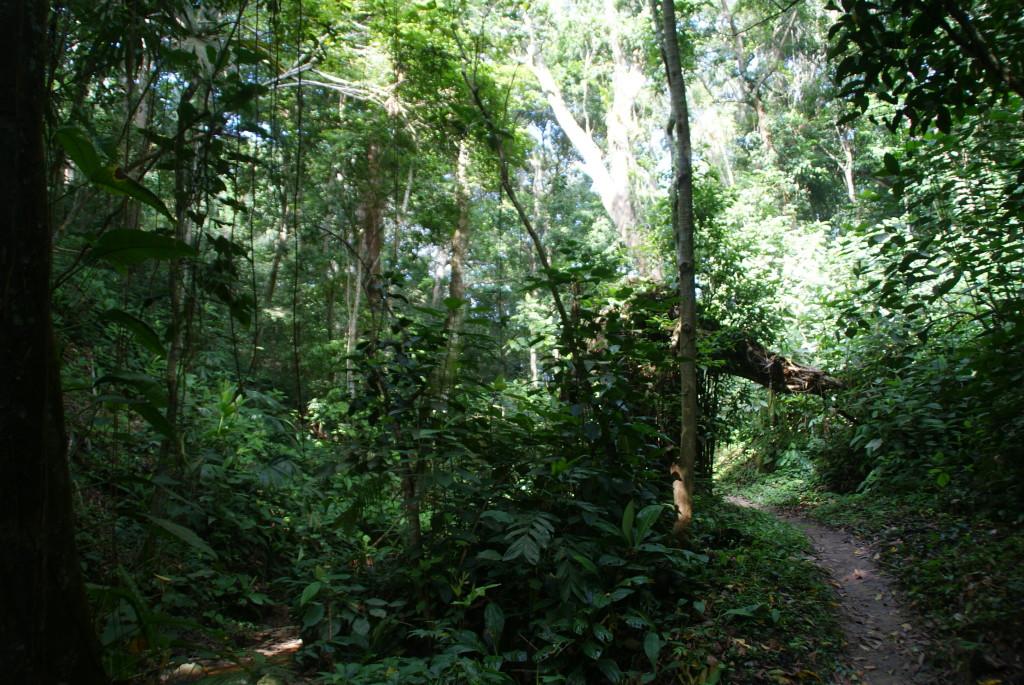 Ausflug zum Tayrona Nationalpark